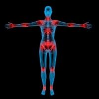 Μυοσκελετικού Συστήματος
